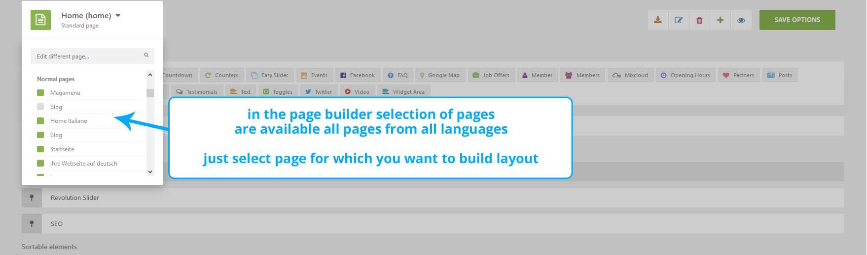 Page Builder Translation