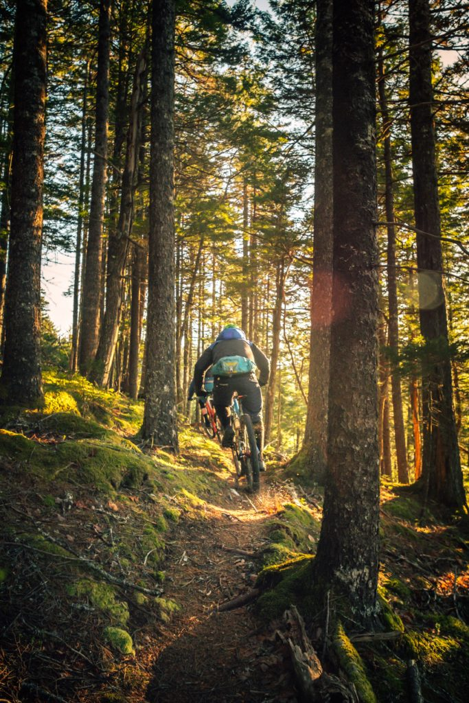 Show hiking trails or bicycle trails on the map with Citadela Directory