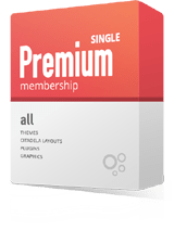 Premium Single Package