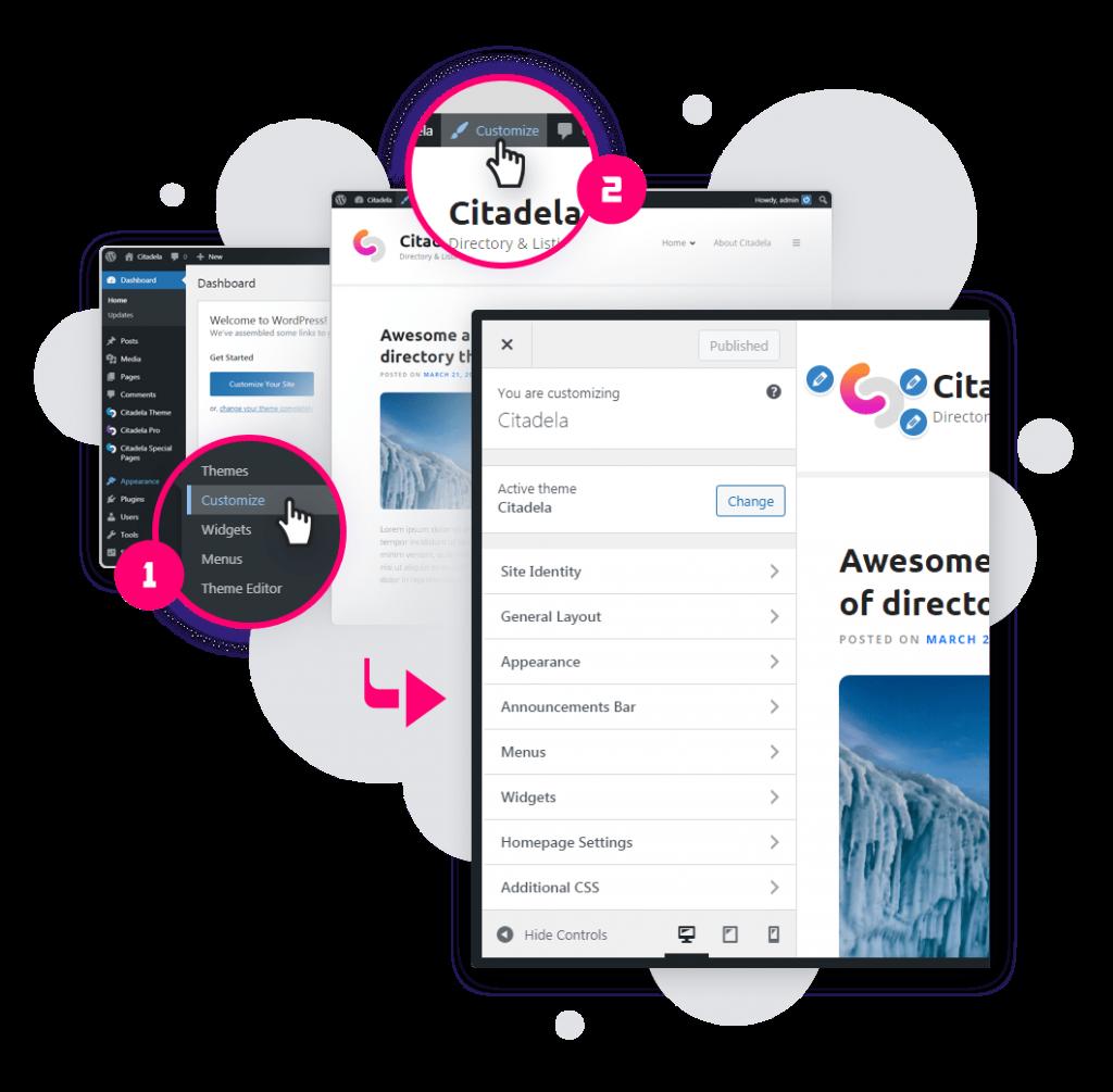 Pro plugin - customizer access